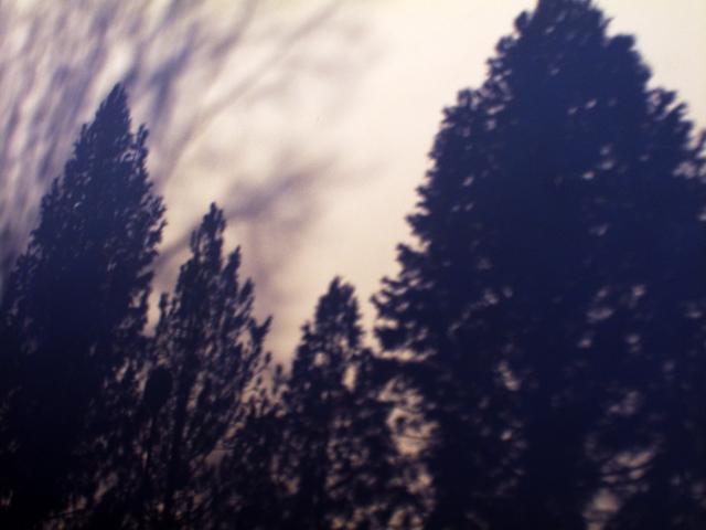 shadow2online