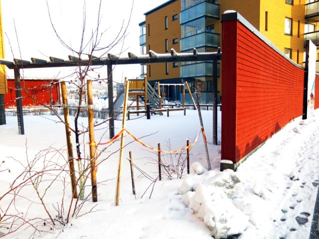 talvi1415_26online
